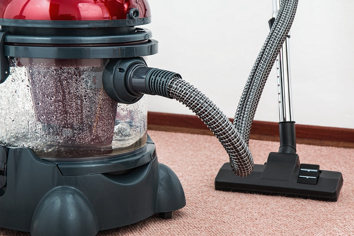 The Benefits of Upholstery and Carpet Cleaning in Your Small, Shared Apartment