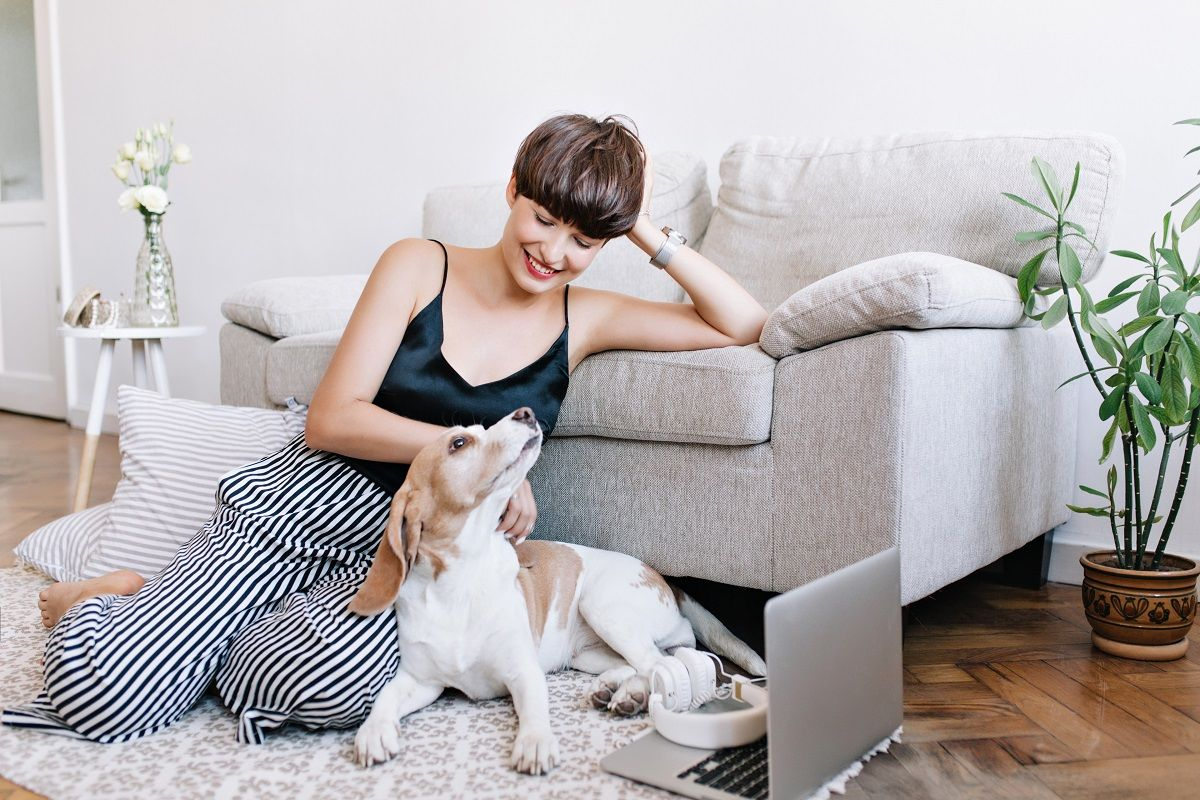 How to Keep the Peace When Living with Your Pet in Your Apartment